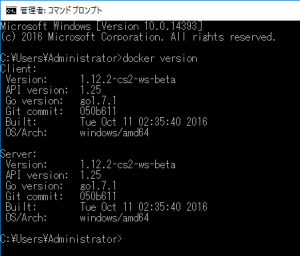 checkversion-windows-docker