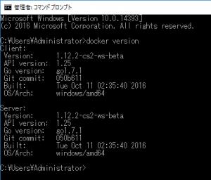 checkversion-windows-docker